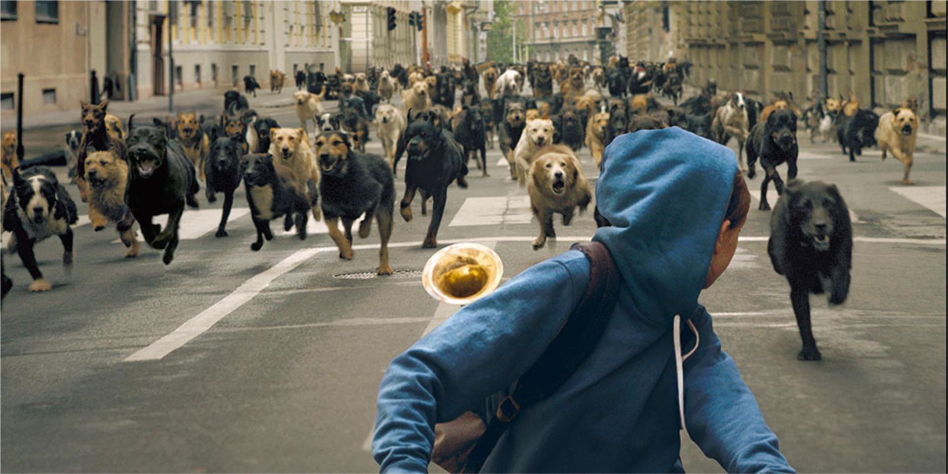 15 de mis películas favoritas para amantes de los animales