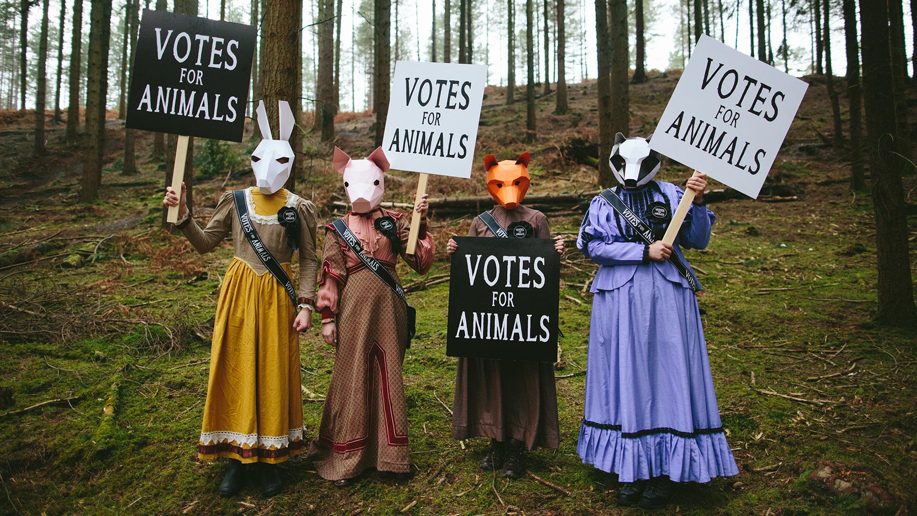 Votar por los animales este 21D