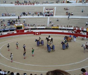 ¿Llegó el fin de las corridas de toros en Maracaibo?