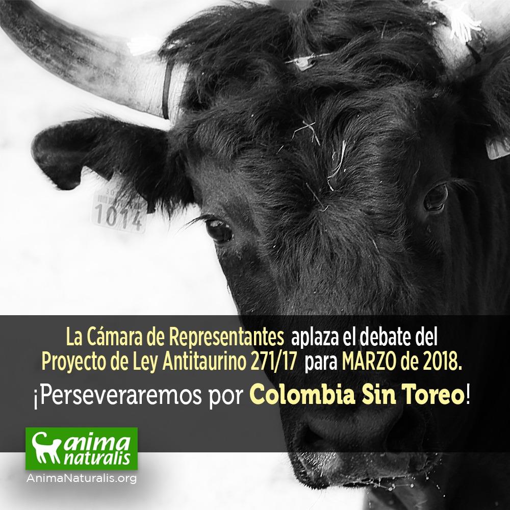 Aplazado debate del proyecto de ley Colombia Sin Toreo hasta marzo. Conozca por qué.
