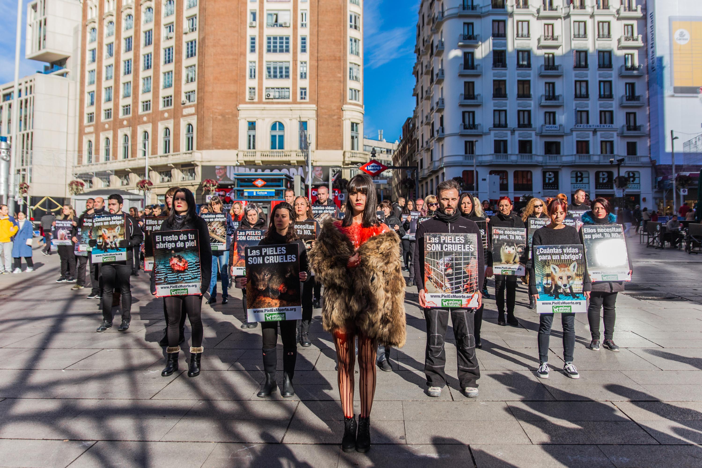 AnimaNaturalis se toma Callao para exigir el fin del uso de pieles de animales