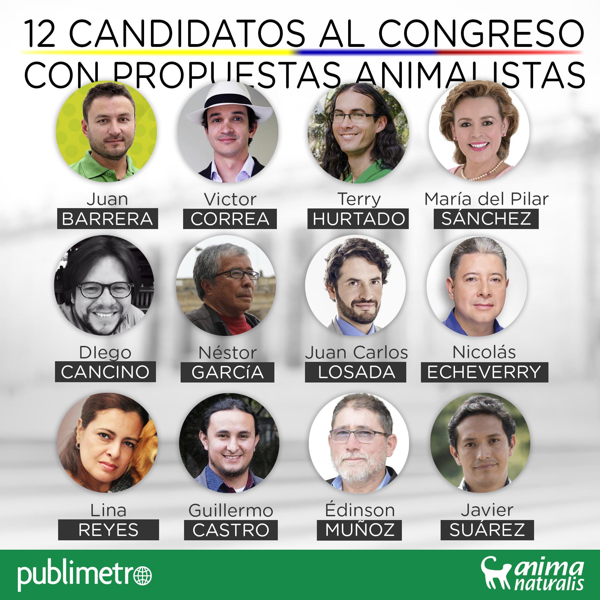 12 candidatos al Congreso con propuestas animalistas