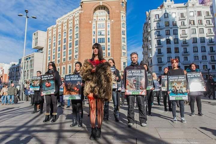Acción protesta contra el uso de las pieles en Pamplona