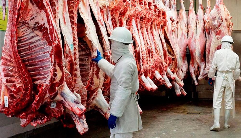 """Clembuterol: el """"secreto"""" de la carne contaminada en México"""