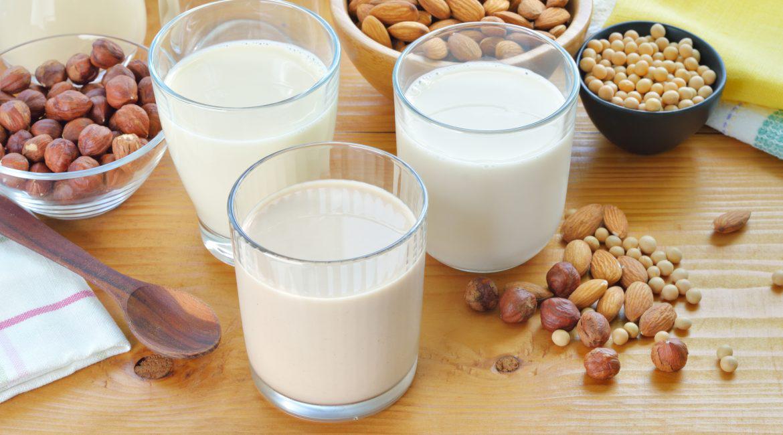 AnimaNaturalis se une a la iniciativa World Plant Milk Day