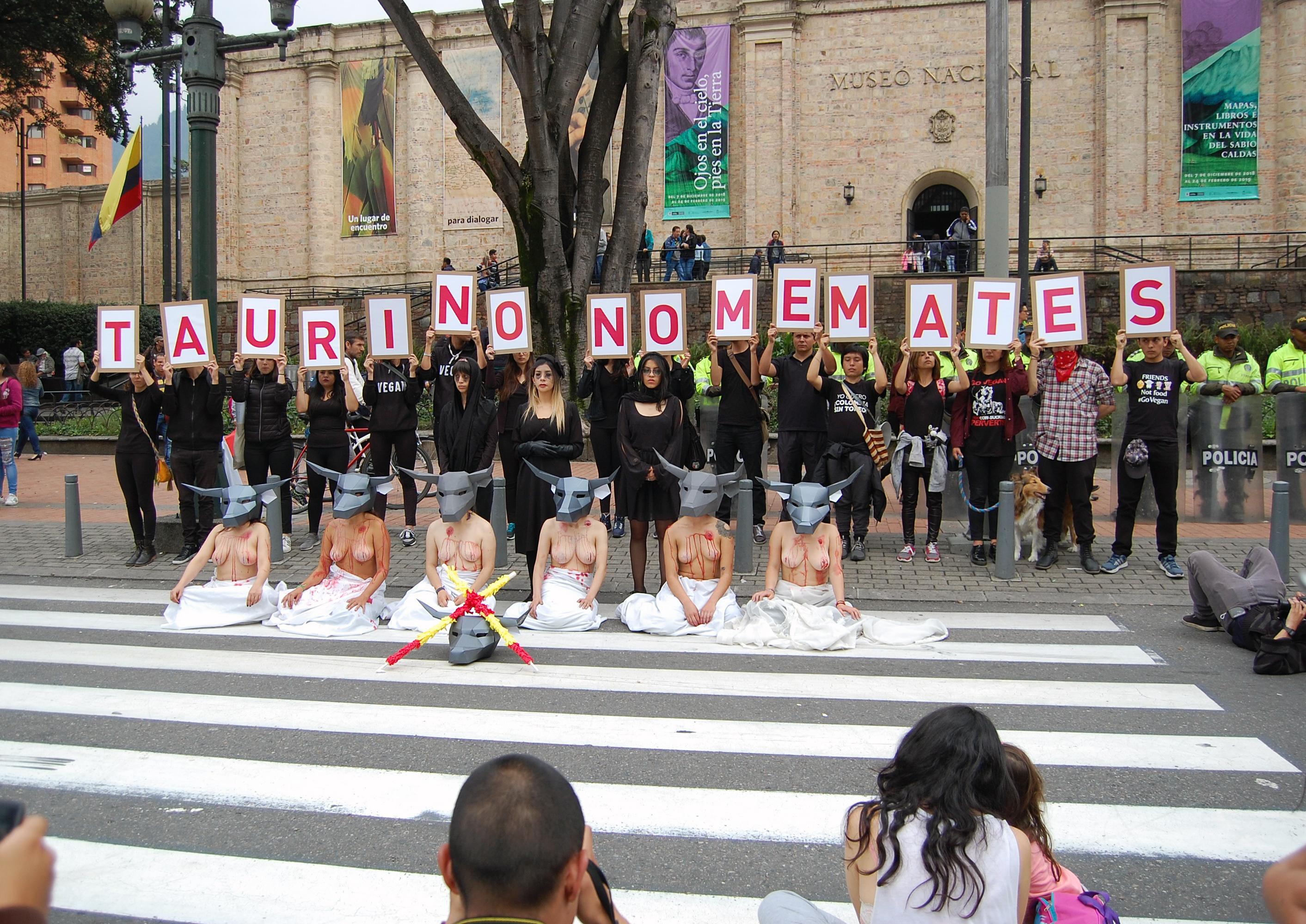 AnimaNaturalis realizó un performance en para protestar contra las corridas de toros en el último día de la temporada taurina de Bogotá.