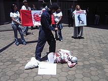 Segunda protesta contra caza de focas