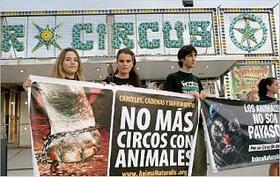 El Gobierno de Lloret no autorizará ningún circo más con animales
