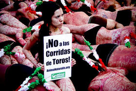 AnimaNaturalis, firme por la abolición de la tauromaquia