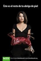Panelista de Televisión se muestra contrario al uso de pieles de animales