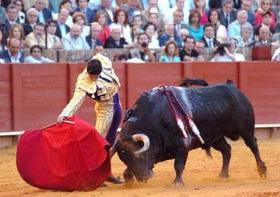 ¡Vota NO! ¿Crees que los toros deberían formar parte del temario educativo?