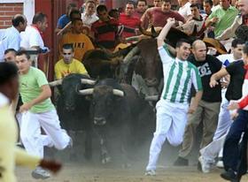 """¡Apoya la campaña para impedir que haya toros en las """"Xiqueñadas""""!"""