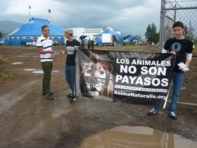 Activistas en Michoacán se plantaron frente al Zavara Circus