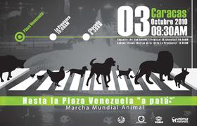 Venezuela Marchará por los Animales