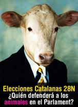 Elecciones 2010 en Cataluña: ¿Y quién defenderá a los animales en el Parlament?