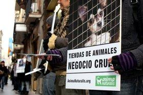 Acto informativo en Barcelona frente a las tiendas de animales