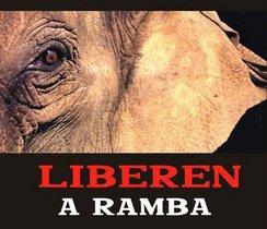 "Mensaje de fin de año de la Campaña ""Liberen a Ramba"""