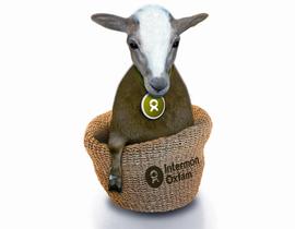 Intermón Oxfam promueve el especismo. ¡Protesta ya!