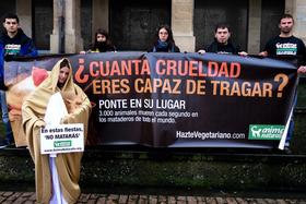 AnimaNaturalis en Navarra escenifica una ''Navidad sin crueldad''