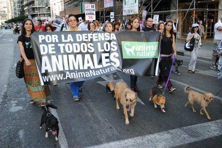 AnimaNaturalis se manifiesta en Valencia contra el maltrato animal