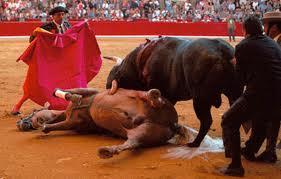 ¡PAN organiza corrida de toros para promover a candidatos en Guanajuato!