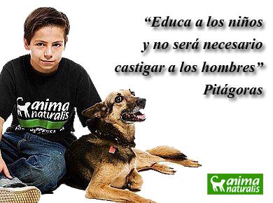 Celebraremos el Día del Niño educando sobre el trato a los animales