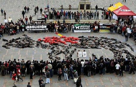 Decenas de activistas se Pusieron en la Piel del Toro en Bogotá