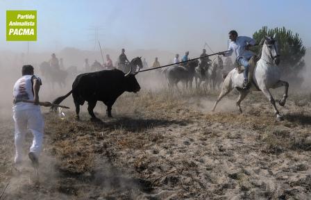 Las protestas crecen ante el toro de la vega de 2012