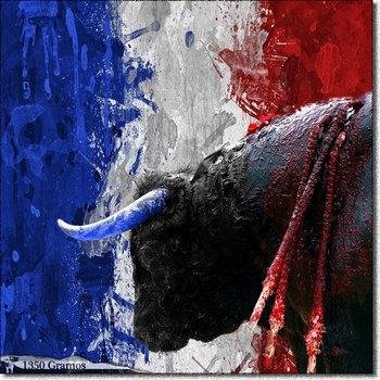 Francia decide hoy si las corridas de toros deben ser prohibidas