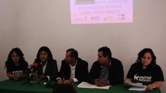 Rueda de prensa por campaña de esterilizaciones caninas y felinas en Tlaquepaque