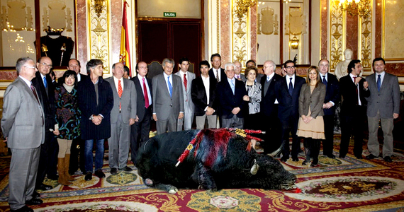 ¡Ponte en acción en las redes sociales! ¡No a la ILP taurina en España!