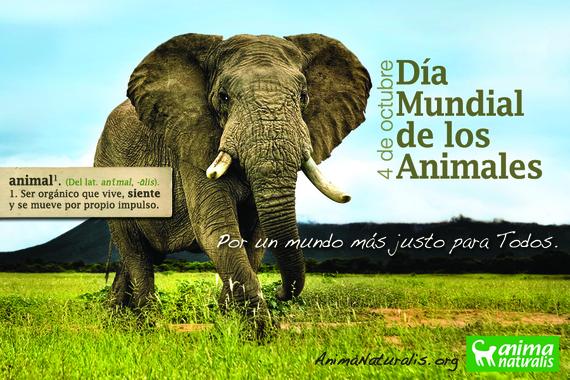 4 de octubre: día mundial de los animales