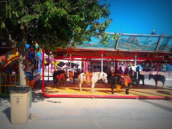 ¡Chiclana de la Frontera, Cádiz, prohíbe los carruseles de ponis!