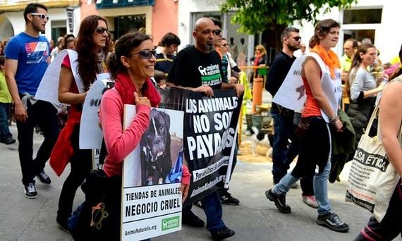 Éxito en la manifestación contra el maltrato animal en Cádiz