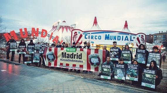 Activistas protestan en Madrid por el maltrato de los animales 'que pasan por el aro'