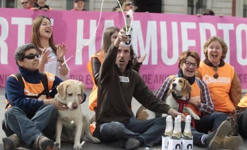 Madrid prohibirá el sacrificio de animales abandonados
