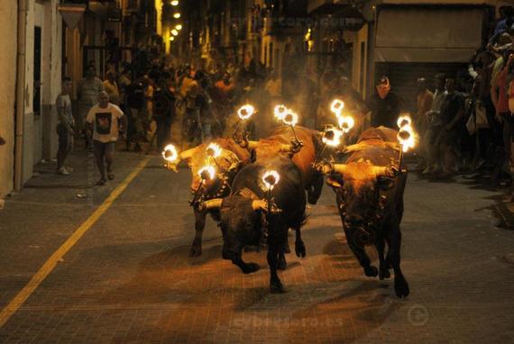 Burriana suspende el encierro de toros embolados porque la ley no contempla esta modalidad