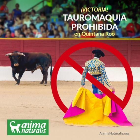 ¡Victoria! ¡Quintana Roo dice adiós a espectáculos crueles con animales!