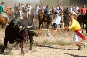 El Congreso rechaza la prohibición de El Toro de la Vega, pero se abre una puerta a la esperanza