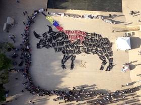 Activistas en Medellín ensangrentados y semidesnudos se pusieron En la Piel del Toro