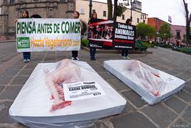 """Con bandejas de """"carne humana"""", conmemoramos Día Sin Carne en México"""