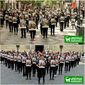 Madrid y Barcelona se manifestaron contra los experimentos en animales