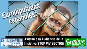 Que los eurodiputados españoles ayuden a Stop Vivisection, ¡escríbeles!