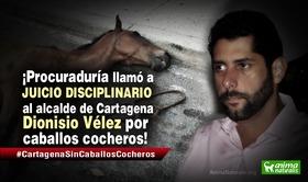 Acción popular empieza a dar frutos: Procuraduría llama a juicio disciplinario al alcalde de Cartagena por caballos cocheros