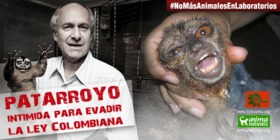 Patarroyo intimida para evadir la ley colombiana
