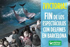 El zoo de Barcelona elimina el espectáculo con delfines
