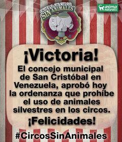 San Cristóbal reforma ordenanza y prohibe Circos con Animales Silvestres