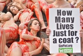 """""""Los animales necesitan que les demos voz con estos actos, hacemos falta"""""""
