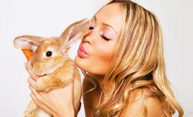10 maquillajes no probados en animales que no te puedes perder