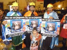"""Lanzamos campaña """"No al comercio animal"""" en Morelia"""